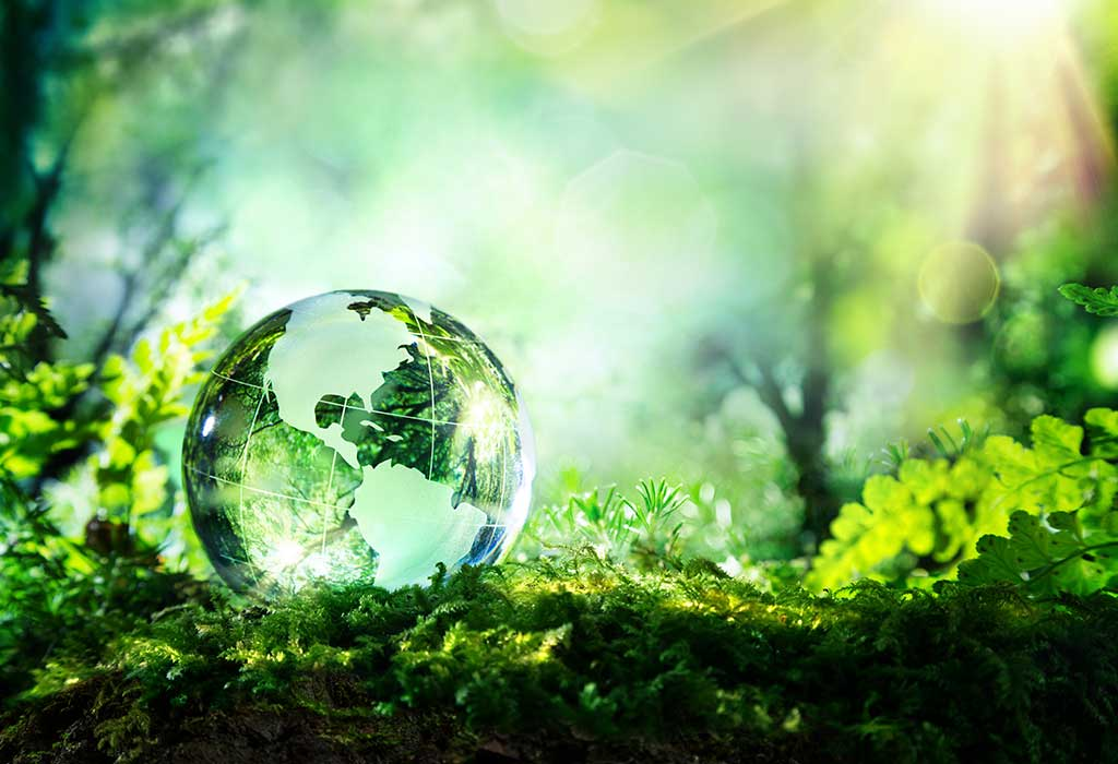 what is the history of world environment day
